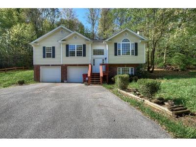 Johnson City TN Single Family Home For Sale: $195,900