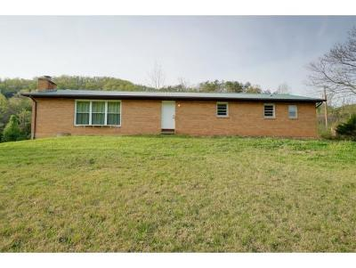 New Tazewell, Tazewell, Harrogate Single Family Home For Sale: 1165 Upper Caney Valley Road