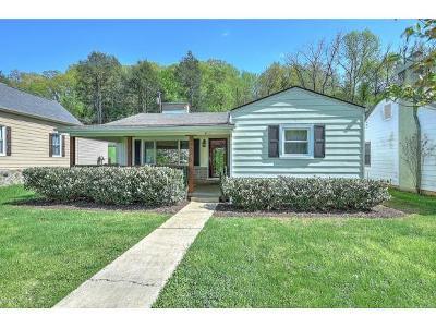 Johnson City Single Family Home For Sale: 415 West Poplar Street