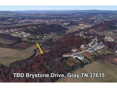 Washington-Tn County Residential Lots & Land For Sale: TBD Brystone Drive