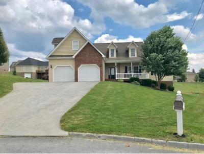Gray Single Family Home For Sale: 141 Bend Ct