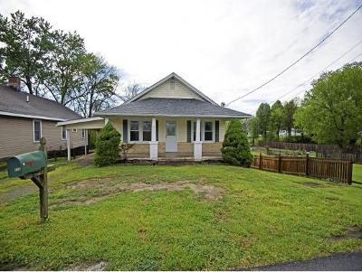 Johnson City Single Family Home For Sale: 203 South North Street