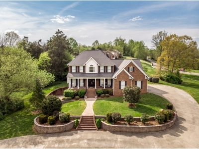 Greene County Single Family Home For Sale: 102 Watercress Drive
