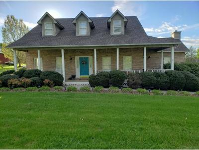 Kingsport Single Family Home For Sale: 300 Pickens Road