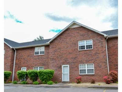 Johnson City Condo/Townhouse For Sale: 807 Swadley Road #8 #8