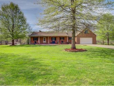 Johnson City Single Family Home For Sale: 145 Cedar Grove Rd
