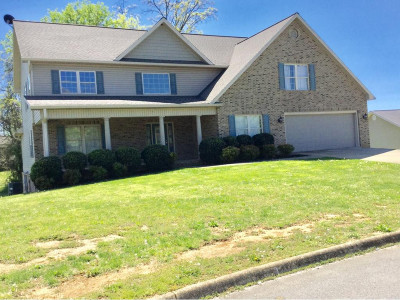 Greeneville Single Family Home For Sale: 33 Owen Lane