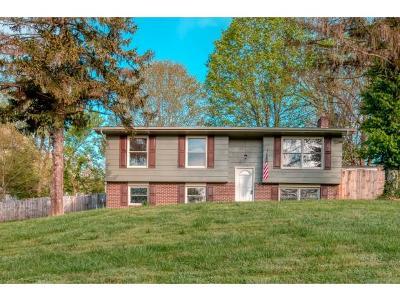 Kingsport Single Family Home For Sale: 429 Light St
