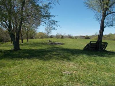 Washington-Tn County Residential Lots & Land For Sale: 212 Slate Hill Rd