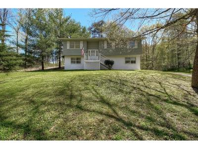 Piney Flats Single Family Home For Sale: 401 Floyd Hollow Road