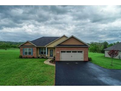 Jonesborough, Jonesboorugh, Jonesborogh, Jonesboroough, Jonesborough,, Jonesborugh, Jonesbourgh, Jonesoborough, Jonesorough Single Family Home For Sale: 1597 Old Stagecoach Rd