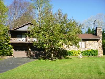 Kingsport Single Family Home For Sale: 343 Sugarwood Drive