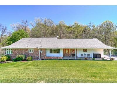 Kingsport Single Family Home For Sale: 521 Pond Springs Rd