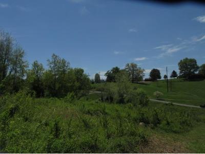 Washington-Tn County Residential Lots & Land For Sale: TBD Joe Hale Dr