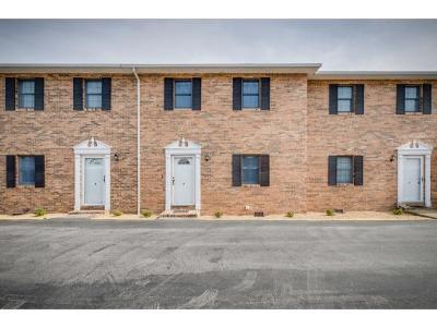 Kingsport Condo/Townhouse For Sale: 1544 Jessee St. #G