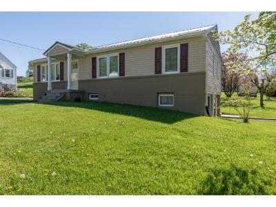 Bristol VA Single Family Home For Sale: $139,000