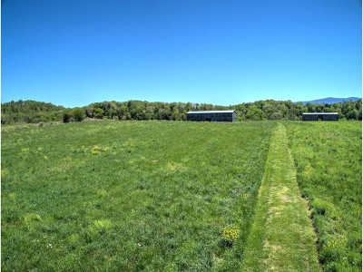 Greene County Residential Lots & Land For Sale: 887 Blackberry Lane
