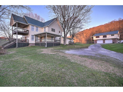 Greene County Single Family Home For Sale: 225 Mary Lamons Rd.