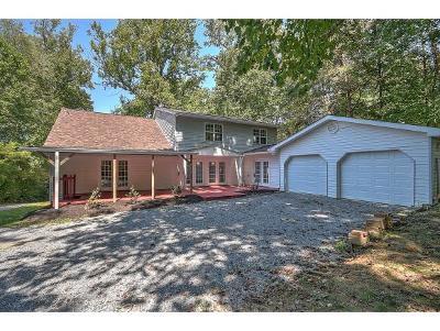 Johnson City Single Family Home For Sale: 413 Cedar Grove Rd