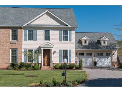 Bristol TN Single Family Home For Sale: $356,000