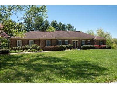 Kingsport Single Family Home For Sale: 5508 Commanche Dr