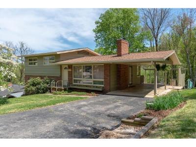 Kingsport Single Family Home For Sale: 2333 Woodridge Avenue