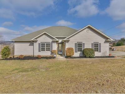 Greene County, Washington-Tn County Single Family Home For Sale: 500 Heritage