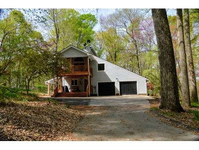 Blountville Single Family Home For Sale: 937 Childress Ferry Road