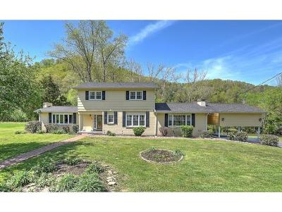 Bristol Single Family Home For Sale: 100 Timberlane Road