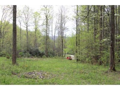 Butler Residential Lots & Land For Sale: 651 Moreland Dr