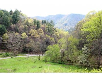 Butler Residential Lots & Land For Sale: Pine Orchard