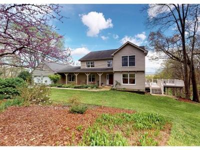 Single Family Home For Sale: 1445 W Allens Bridge Road