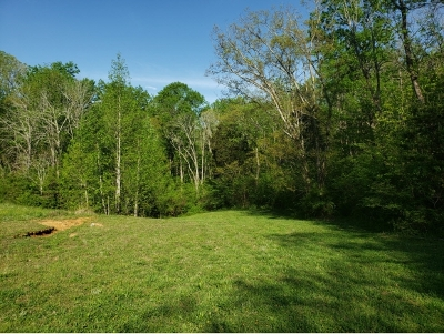Hamblen County Residential Lots & Land For Sale: 6300 Turners Pond Trl