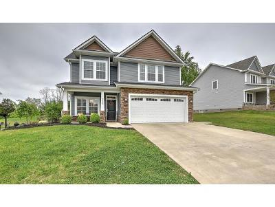 Kingsport Single Family Home For Sale: 3029 Calton Hill