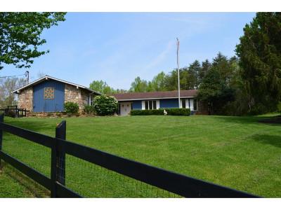 Jonesborough Single Family Home For Sale: 179 Summit Dr