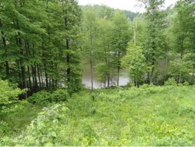 Butler Residential Lots & Land For Sale: TBD Sink Valley Rd