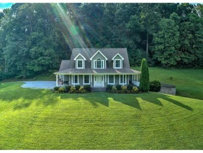Damascus, Bristol, Bristol Va City Single Family Home For Sale: 23107 Bluff Hollow Rd