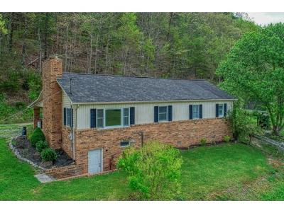 Single Family Home For Sale: 102 Price Road