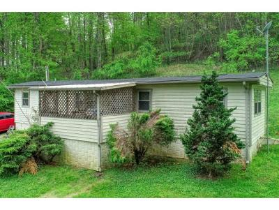 Kingsport Single Family Home For Sale: 451 Fleming Road