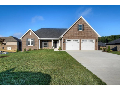 Homes For Sale In Piney Flats Tn