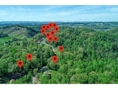 Residential Lots & Land For Sale: 139 Madeline Ln Lot 19