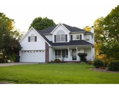 Johnson City Single Family Home For Sale: 117 Hillview Ct.