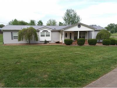 Greene County Single Family Home For Sale: 110 Hemlock Ln