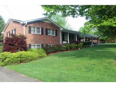 Rogersvillle, Rogesville, Rogersville Single Family Home For Sale: 183 Cedar Crest Circle