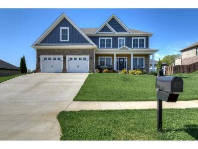Washington-Tn County Single Family Home For Sale: 267 Laurel Canyon