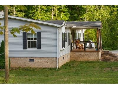 Rogesville, Rogersvillle, Rogersville Single Family Home For Sale: 295 High Rock Rd