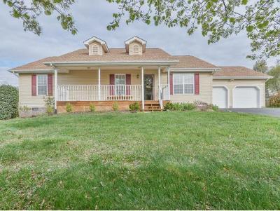 Jonesborough Single Family Home For Sale: 175 Royal Oaks Drive