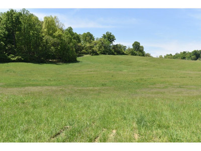 Washington-Tn County Residential Lots & Land For Sale: 1436 Old Boones Creek Road