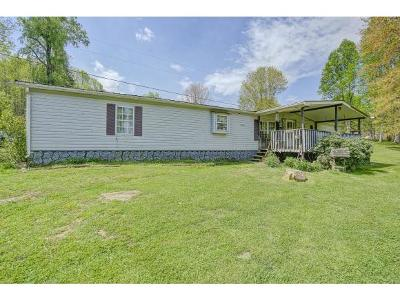Roan Mountain Single Family Home For Sale: 112 Bud Miller