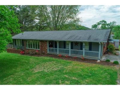 Rogersville Single Family Home For Sale: 543 Maple Lane